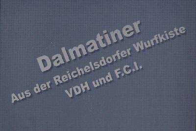 Dalmatiner aus der Reichelsdorfer Wurfkiste